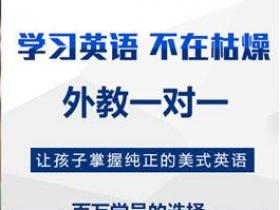 深圳有哪些靠谱英语网课机构排行?要怎么挑选?